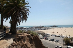 California 011